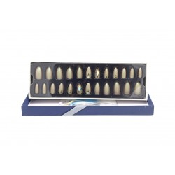 Sticky Nails attractive multi-size easy-to-install adhesive nails BK 19-95 piece 24
