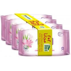 Himalaya Gentle Baby Wipes Pack (2 + 2 Free), 1 pc